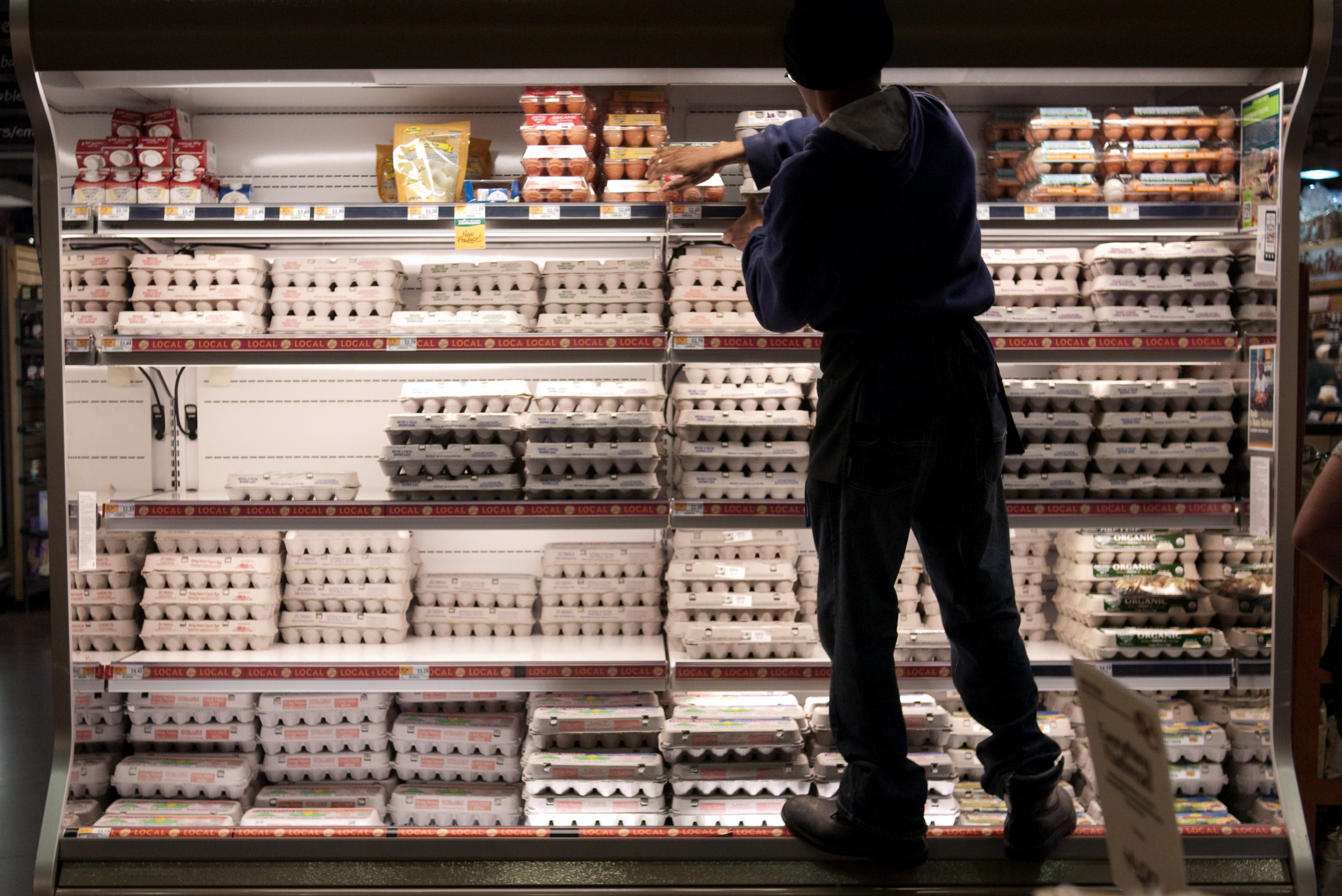 Grocery store worker stocking egg cartons